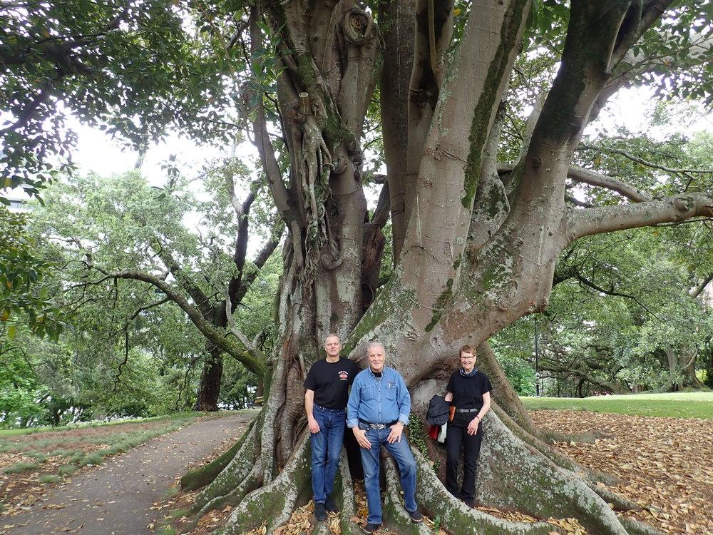 Tarmo, Veikko ja Marjatta luontoa tutkimassa Albertin puistossa