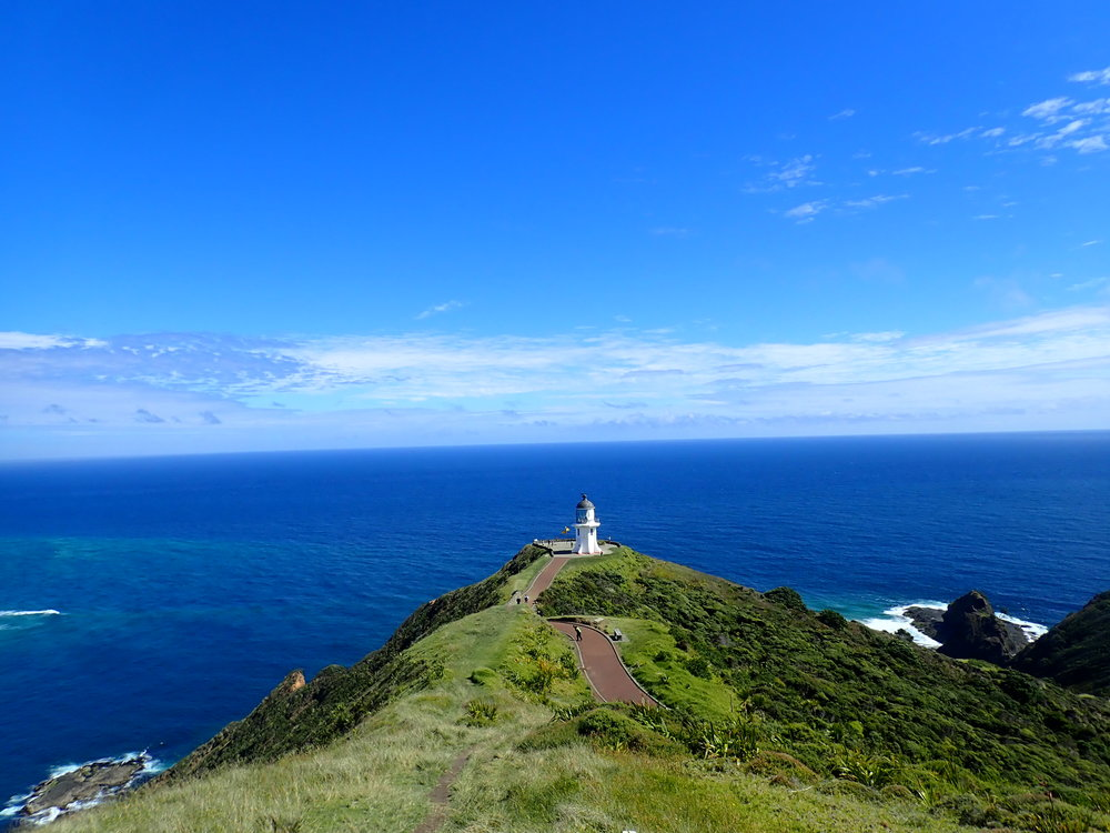 Reinga tarkoittaa Maori kielellä manala - paikalliset uskoivat, että kuoleman jälkeen sielu matkustaa tänne ja laskeutuu tuonpuoleiseen...