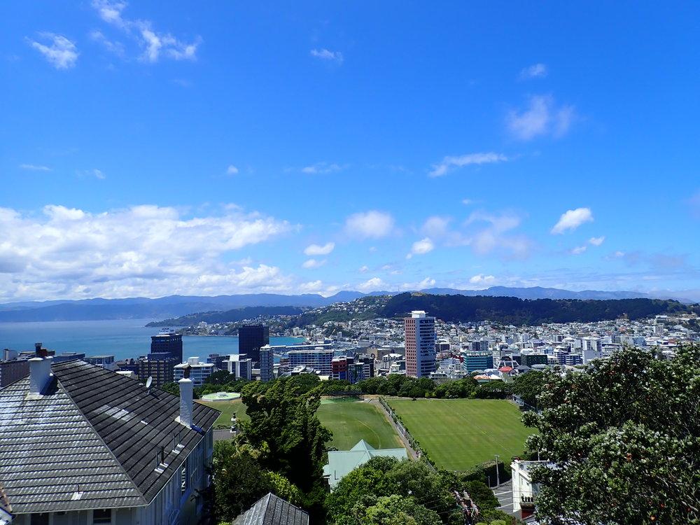 Ehkä kuuluisin Wellingtonin nähtävyyksistä on funikulaari, joka vie reissaajan Lambton Quayn ostoskadulta ylös Botanical Gardeniin katselemaan maisemia.