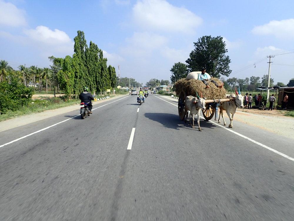 """Sen jälkeen aina Gundalupen saakaa """"Intialasita Highwaytä"""" - pääsääntöisesti vasemmanpuoleinen liikenne, mutta silloin tällöin vastaan väärällä kaistalla vesipuhveleita ja riksoja :)"""