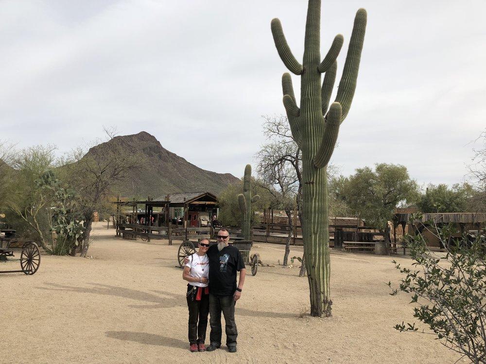 Ei mistelipuu, mutta kaktus kuitenkin!
