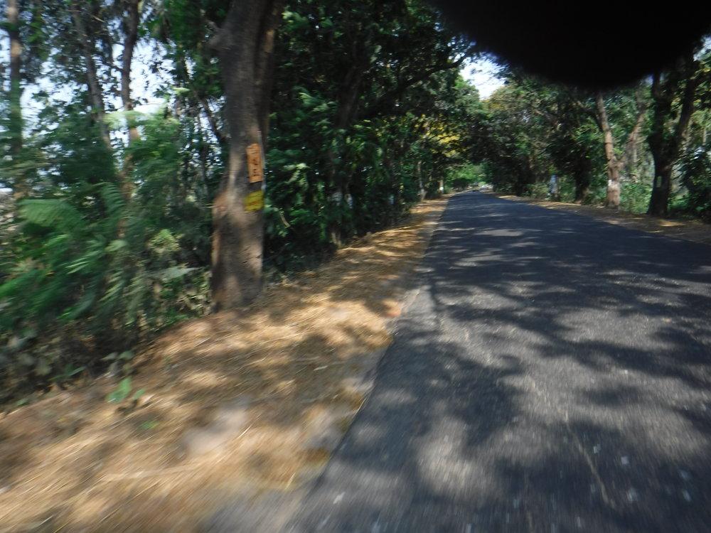 Loppumatka Kakinadaan oli ihan nättiä tietä paikoittain.