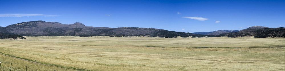 Vulkaaninen alue jota laiduntavat Buffelit olisivat tehneet näkymästä täydellisen lännen maiseman.