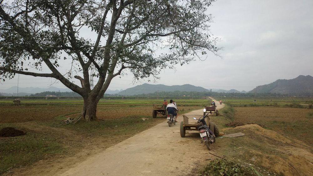Läpi riisipeltojen, Vietnam helmikuu 2013.jpg