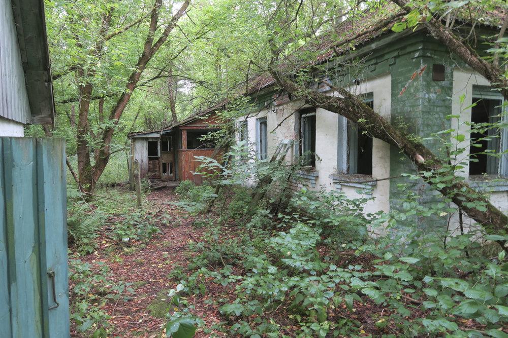 Tsernobyl Pribaja13150.jpg