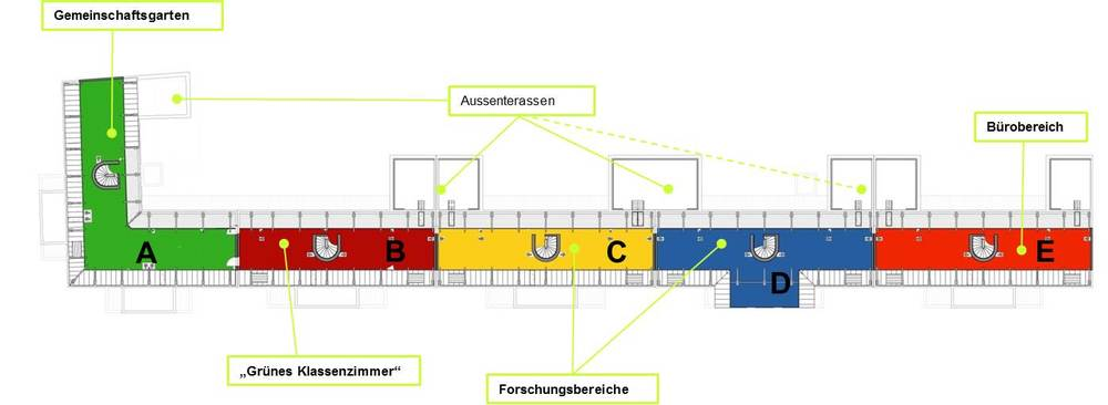 Dachplan_DFB-mit-Angaben_Stand_13.10.2015.jpg