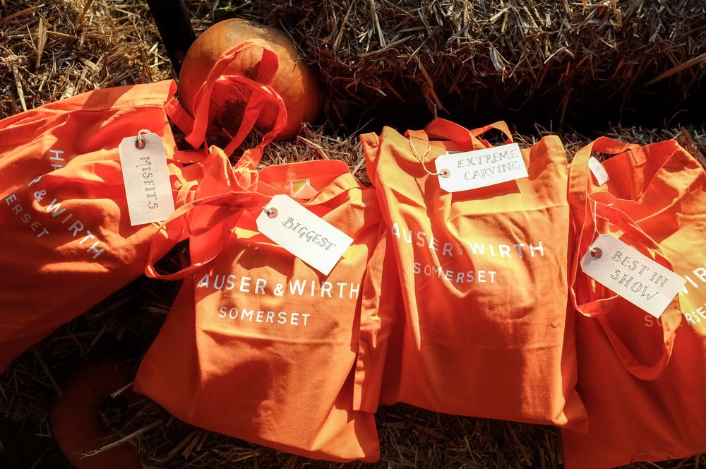 H&W Pumpkin Fest 2015-202.jpg