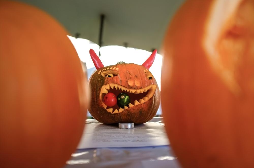 H&W Pumpkin Fest 2015-132.jpg
