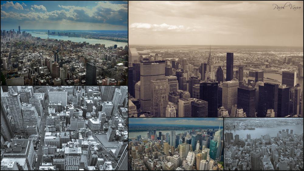 newyorkBaska3.jpg