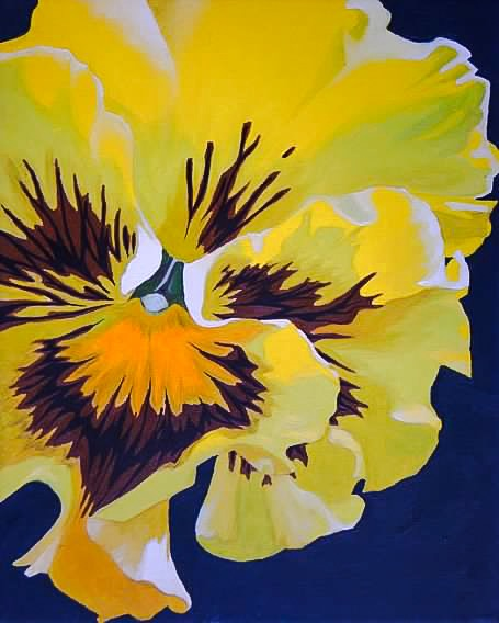yellow pansy, oil on canvas