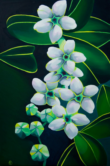 Stephanotis, Oil on Canvas
