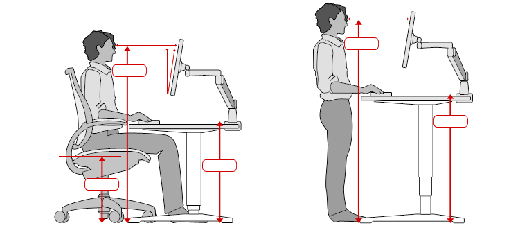 Back Pain Posture And Ergonomics In The Office