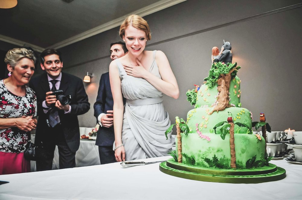 Bride and her King Kong wedding cake