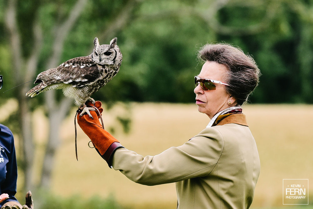 hrh-princess-anne-bird-of-prey-newent-event-16.jpg