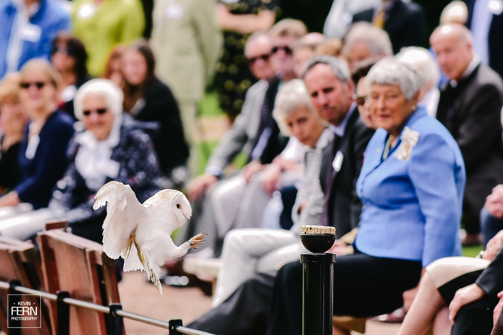 hrh-princess-anne-bird-of-prey-newent-event.jpg