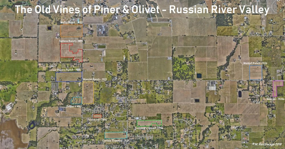The 10 remaining historic vineyards of the Piner & Olivet neighborhood, with earliest listed planting date*