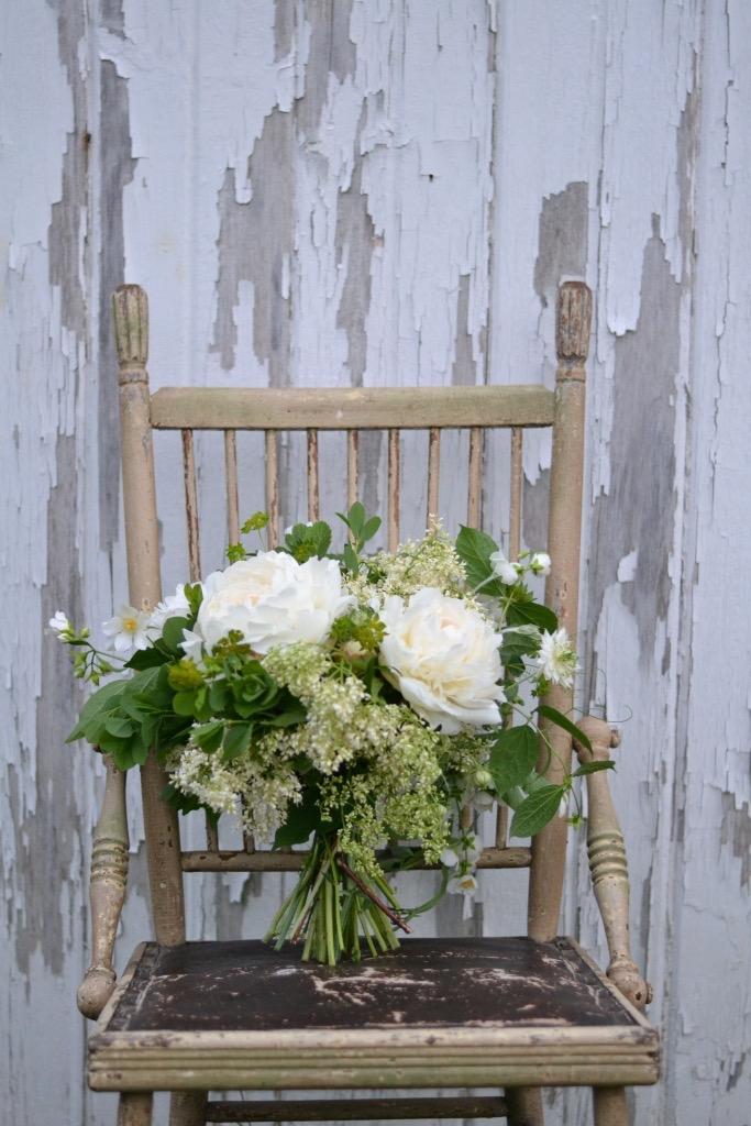 Buckeye Blooms Spring  - 11.jpg