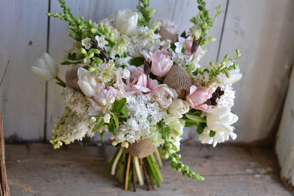 Buckeye Blooms Spring  - 04.jpg