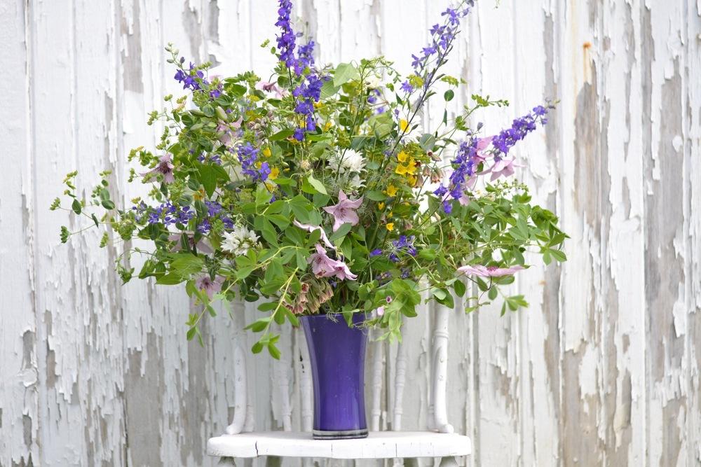 Buckeye Blooms Spring  - 12.jpg