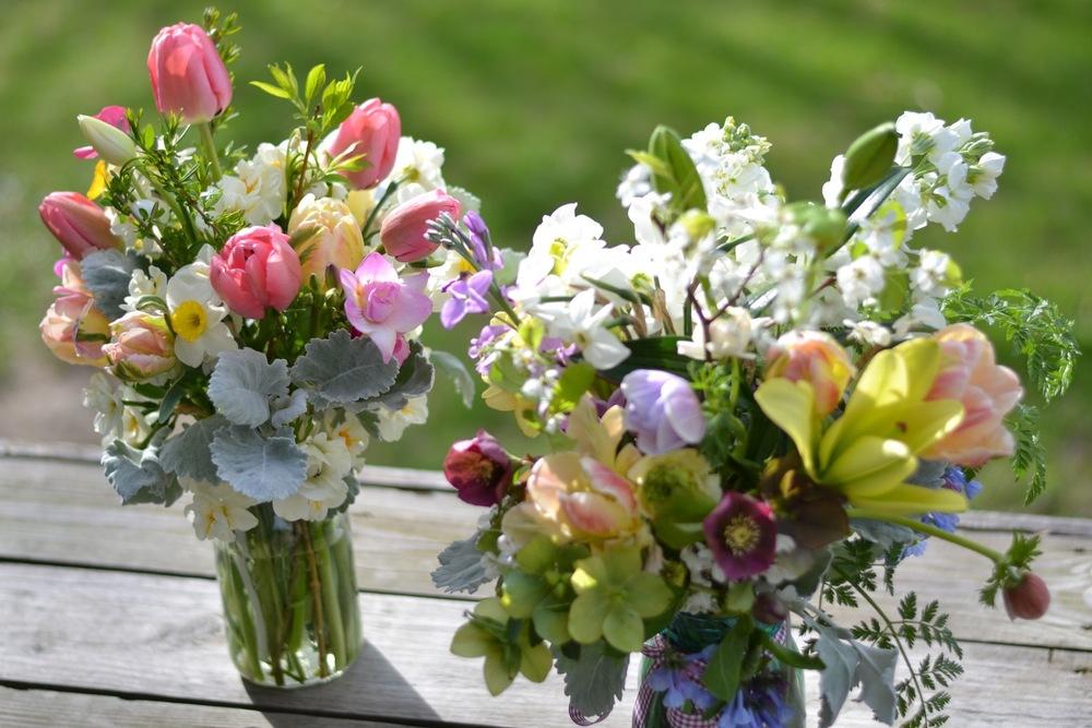 Buckeye Blooms Spring  - 01.jpg