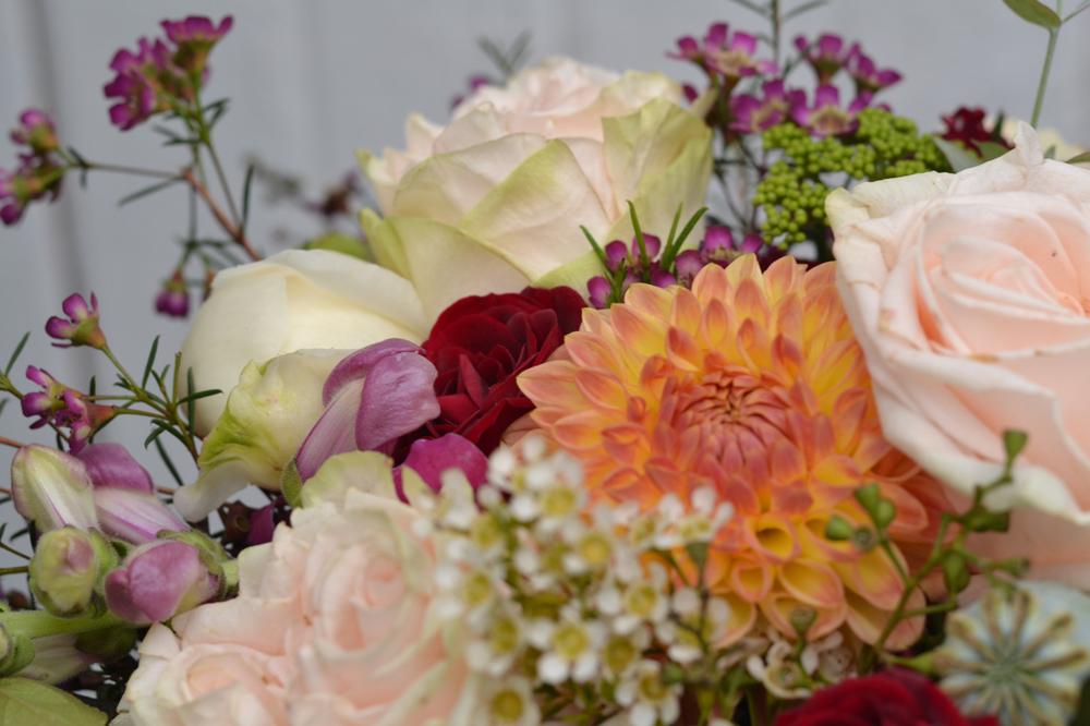 Buckeye_Blooms_June_11 - 2.jpg