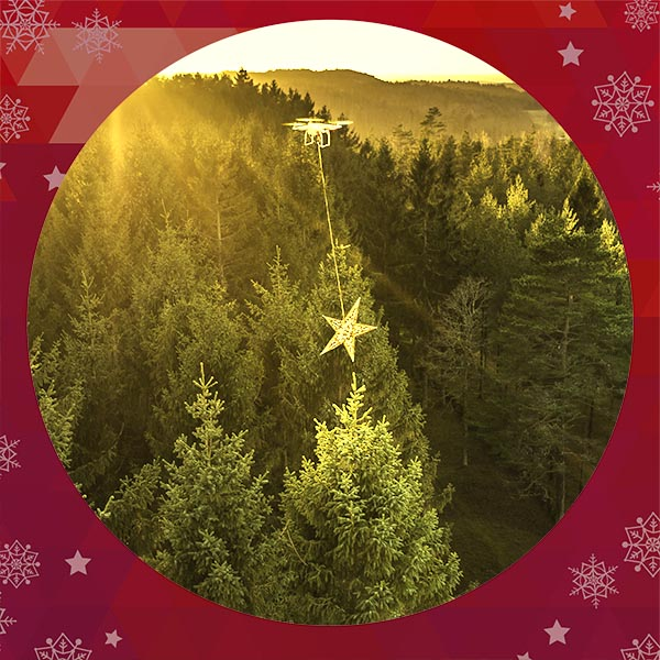Julkort 2014 - Även om det finns för mycket planterad granskog kan den få bli pyntad.