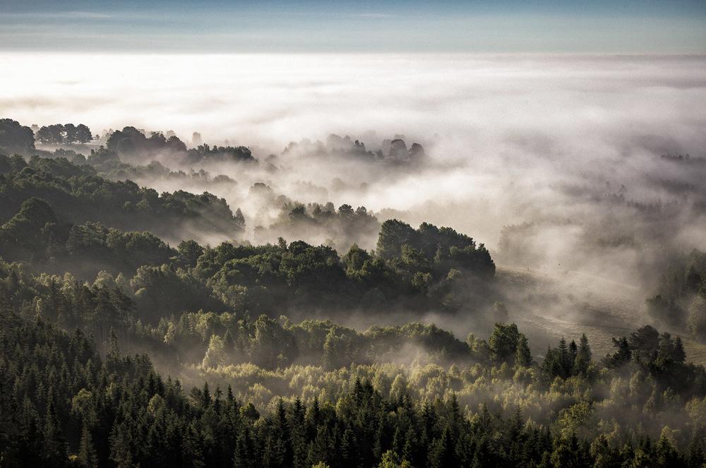 Skogslandskap i Småland