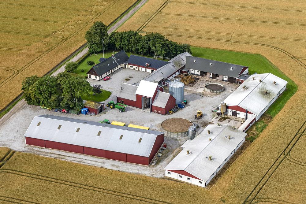 Skånegård