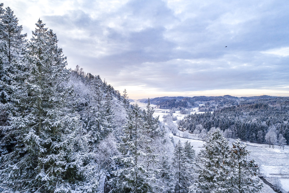 Åbyfjorden i bakgrunden