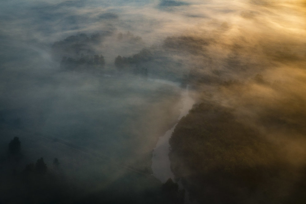 Dimma - nästan som en målning