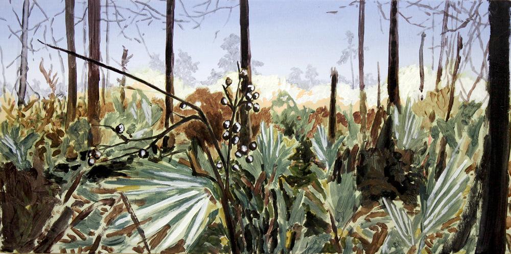 """""""Palmetto Forest"""""""