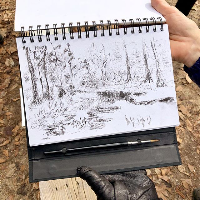 From today's drawing workshop at @northlakenaturecenter where I have sponsored workshops in drawing from observation for years, mostly to kids but now I've opened it up to adults. What I love most about drawing is how it reveals individuality. I try and do my best to provide principles that help others translate what they perceive onto paper. Want to try it? Next one is in April, when everything will be blooming. Contact Rue @northlakenaturecenter.org  to register. No experience necessary. Thank you to everyone who joined me this morning. 💚 (This is all work by participants)
