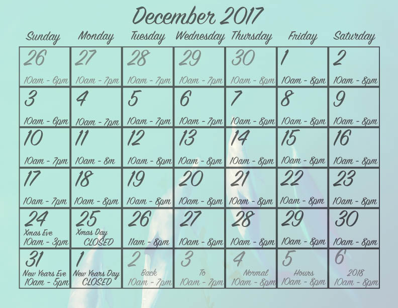 CCS Holiday schedule 2017.jpg
