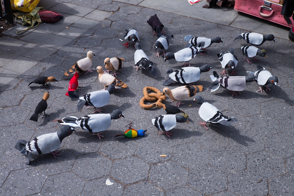 There was a lady selling knit pigeons, so much like the real thing.