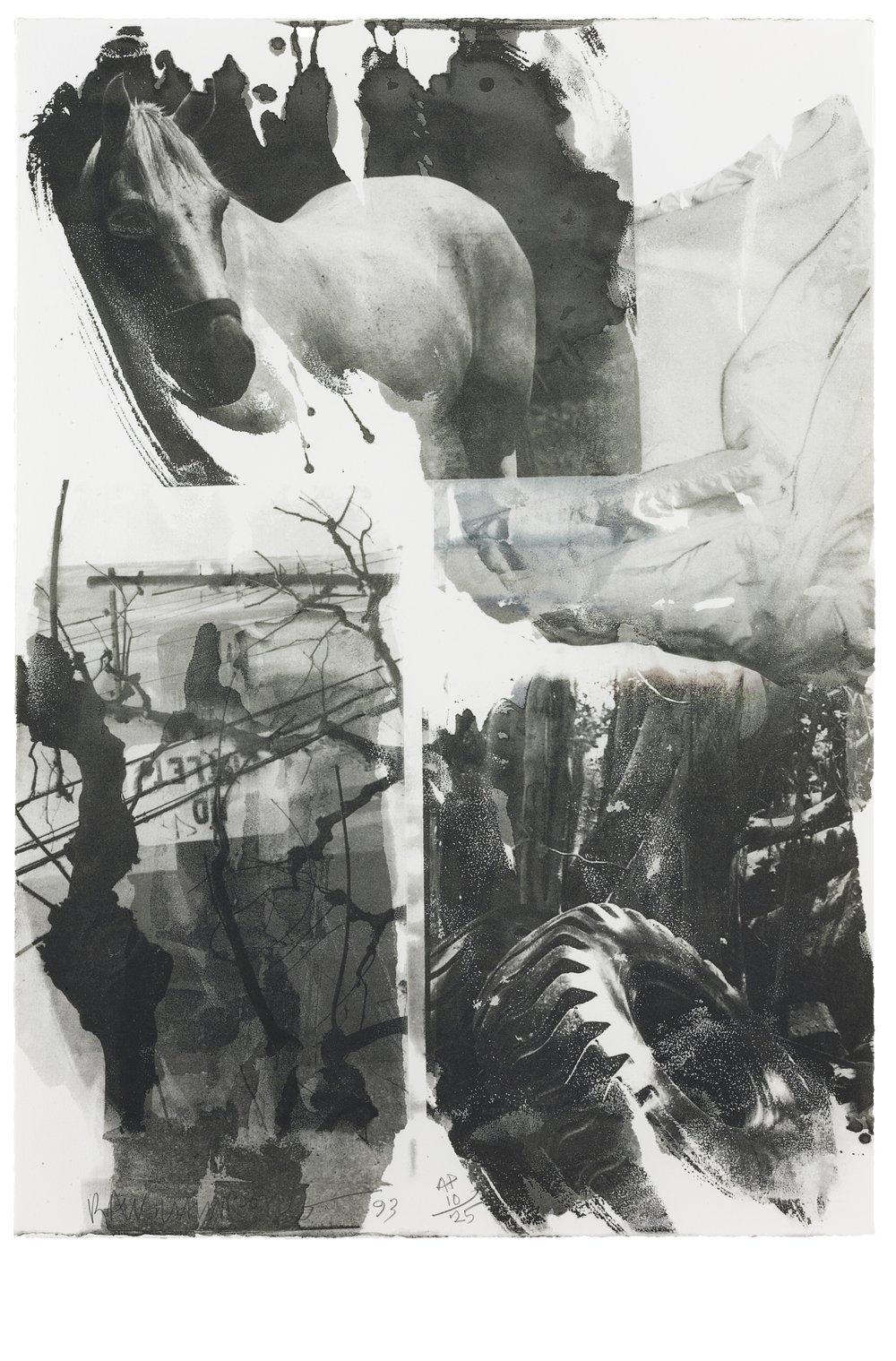 Rauschenberg Horse Silk.jpg