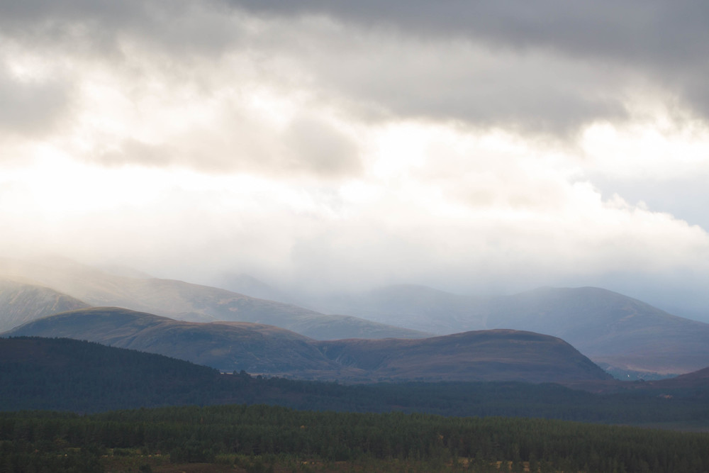 Cairngorms  (1 of 25).jpg