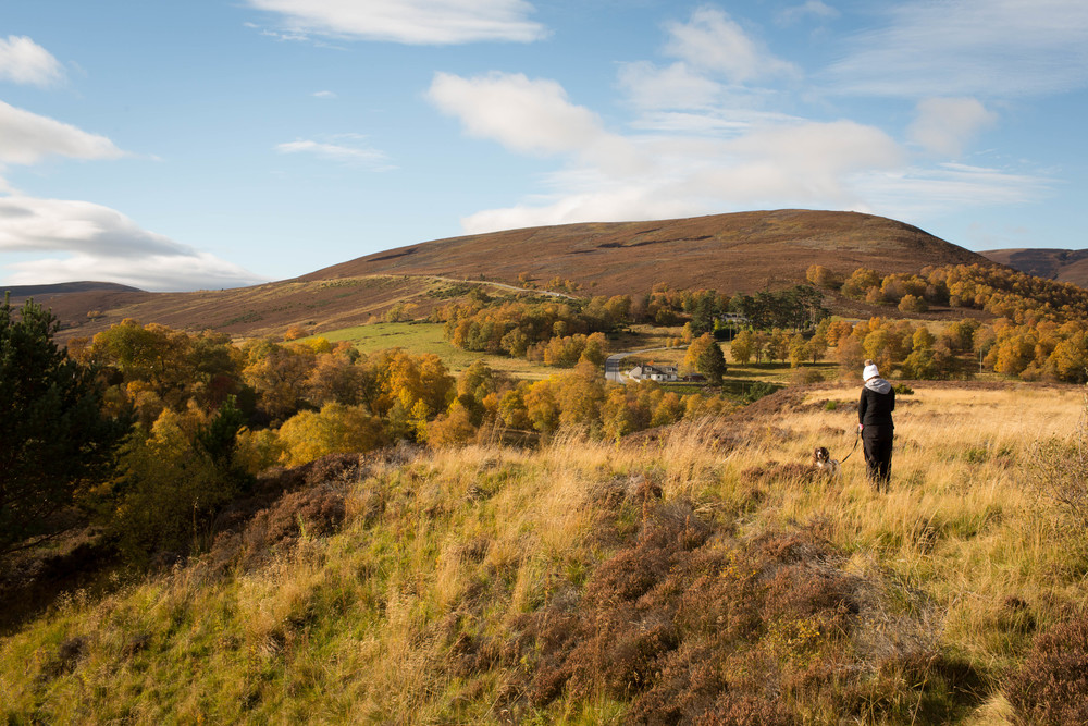 Cairngorms  (24 of 25).jpg