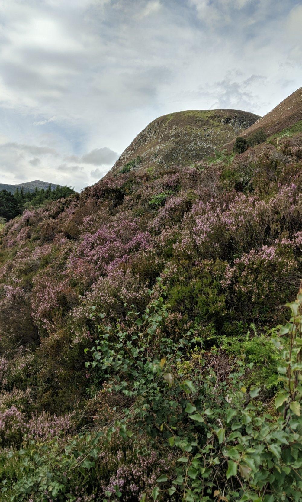 Loch Muick, Ballater, Aberdeenshire