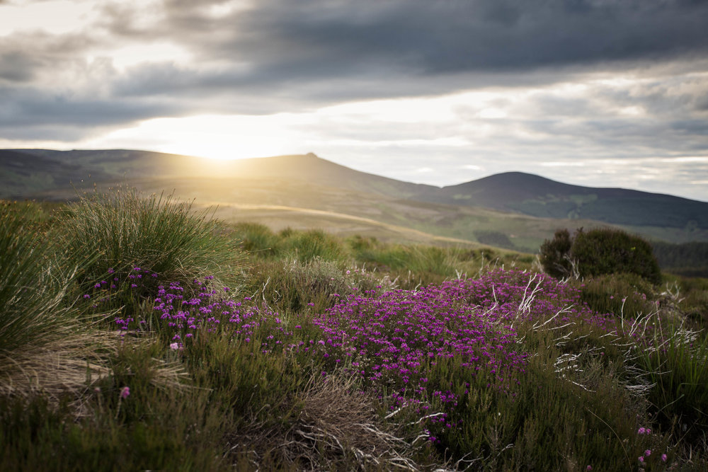 5+things+to+consider+when+planning+a+photography+trip+to+Scotland.jpeg