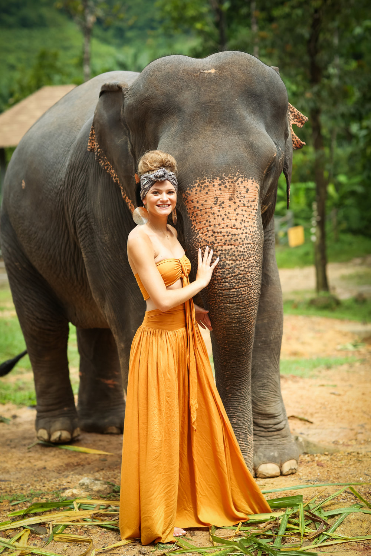 elephant-12.jpg
