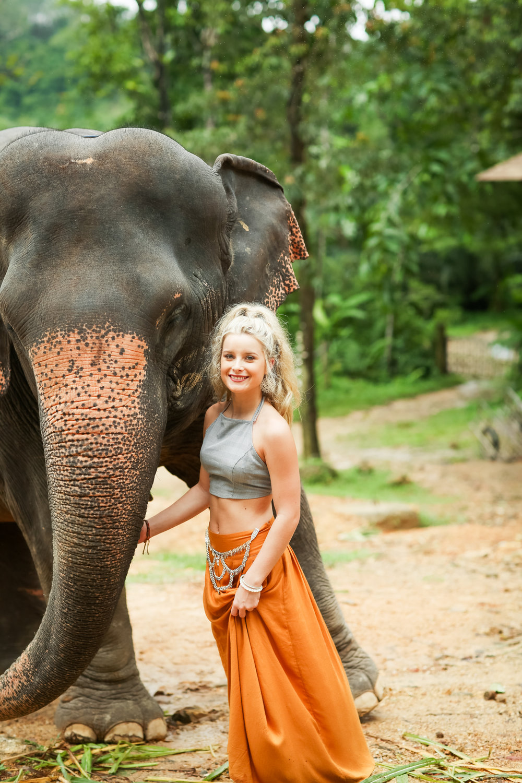 elephant-17.jpg