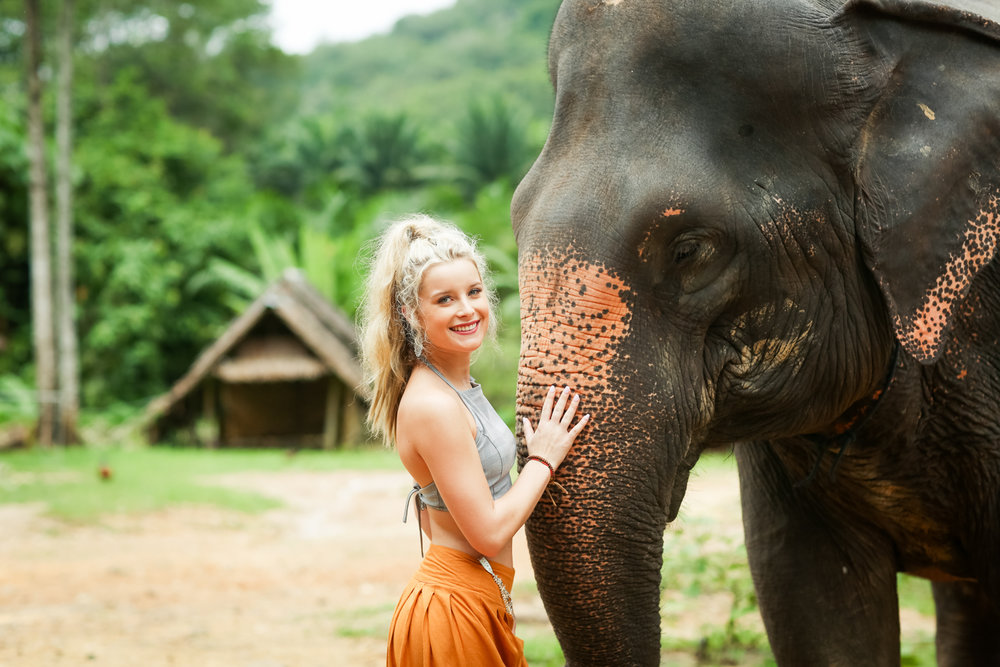 elephant-18.jpg