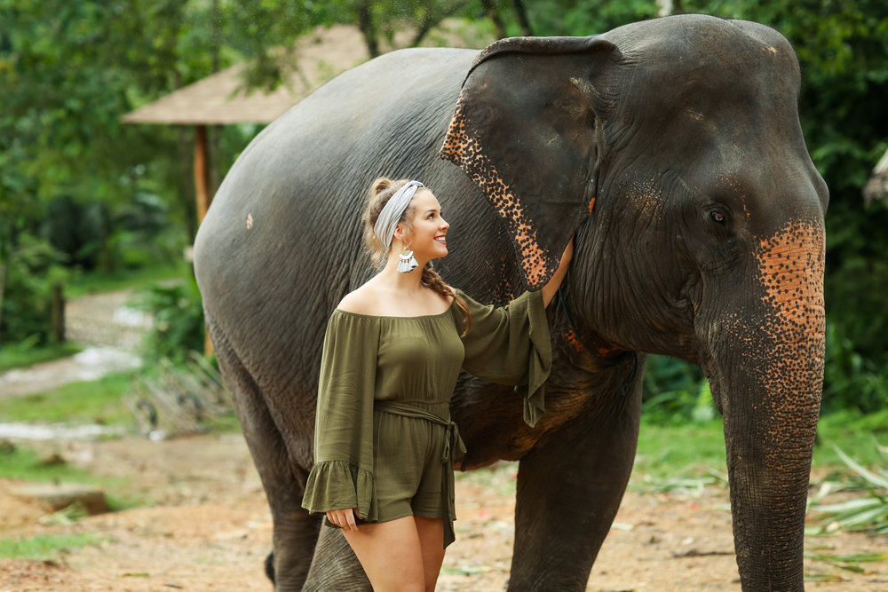 elephant-19.jpg