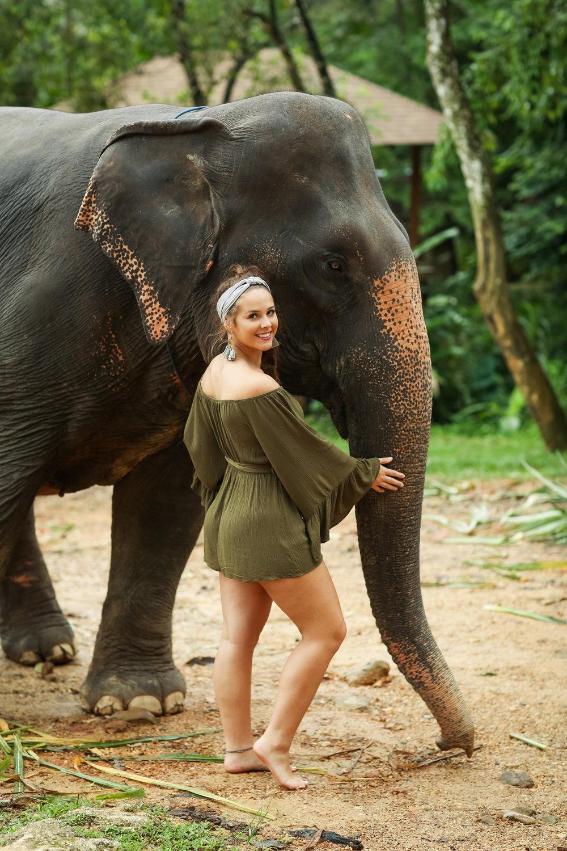 elephant-20.jpg