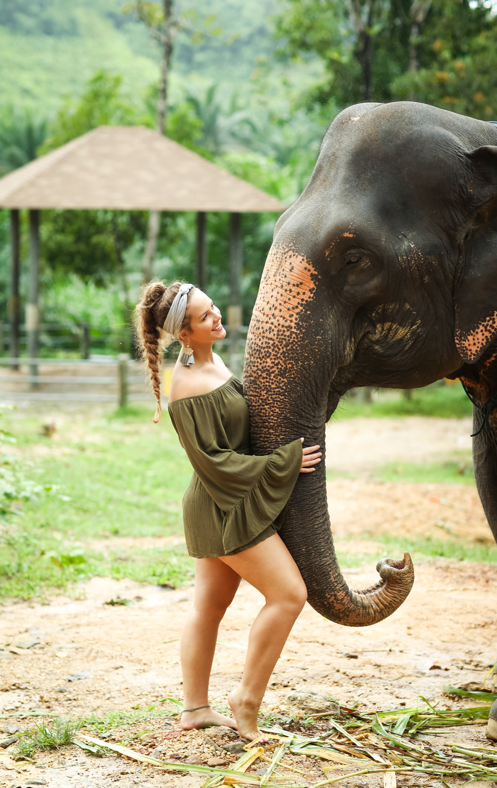 elephant-21.jpg