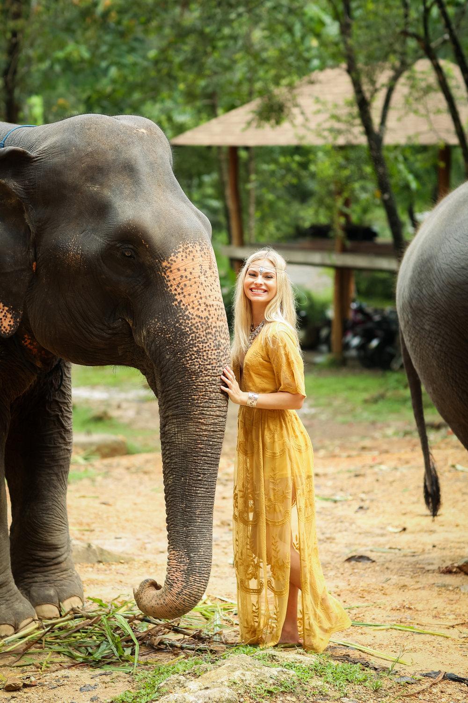elephant-24.jpg
