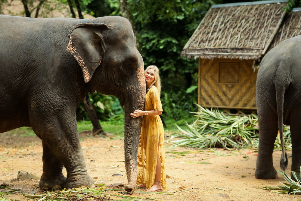 elephant-27.jpg