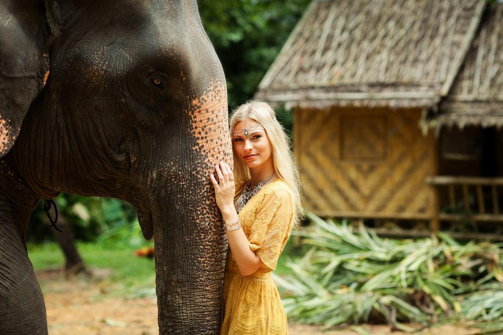 elephant-28.jpg