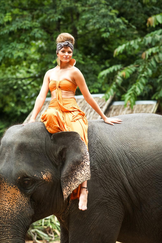 elephant-37.jpg