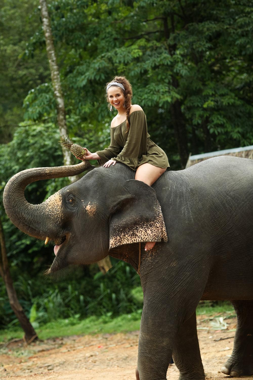 elephant-47.jpg